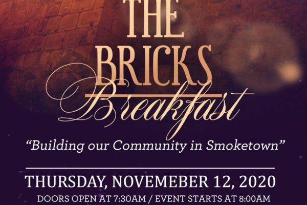 Beyond the Bricks promo
